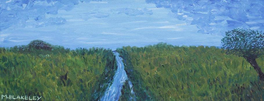 River Running Through The Grassland by Martin Blakeley
