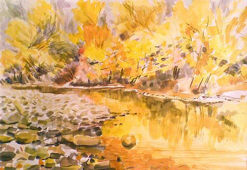 River by Vaidos Mihai