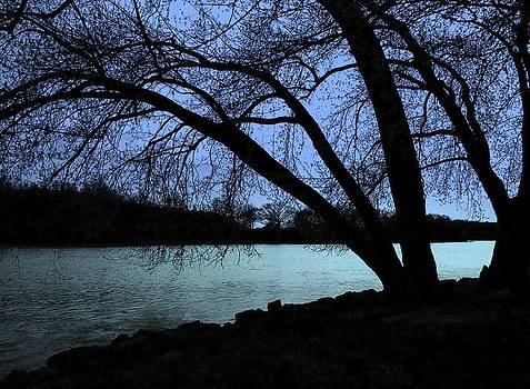 River View by Claude Oesterreicher