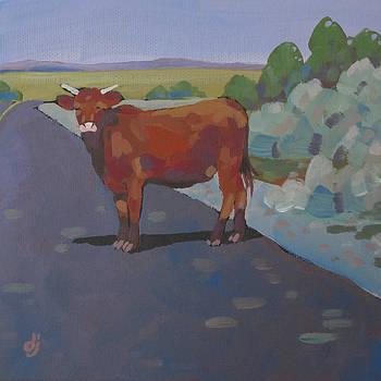 Road Block by Dorothy Jenson