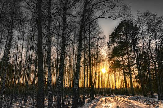 Road Said Yes by Matti Ollikainen