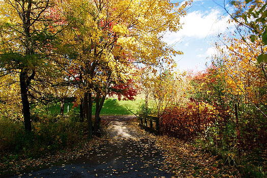 Road to happyness by Jocelyne Choquette