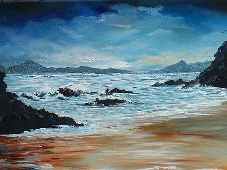 Roaringwater Bay by Conor Murphy