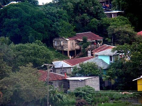 Roatan Honduras by Janis  Tafoya