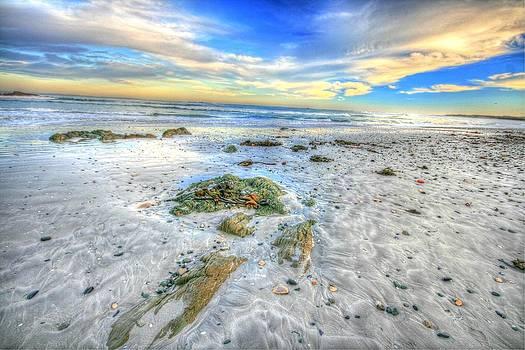 Robben island by David Valentyne