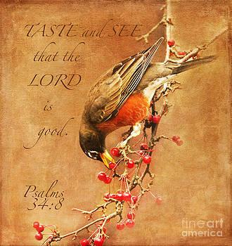 Robin Psalms Thirty-Four by Olivia Hardwicke