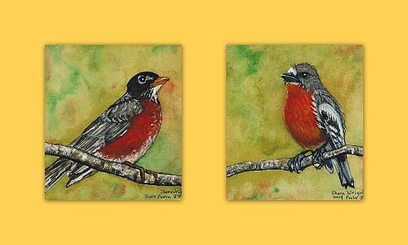 Robins by Shara  Wright