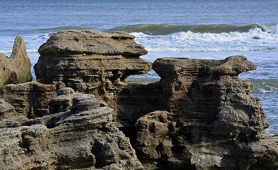 Rock Art on the Florida Coast by Bruce Gourley