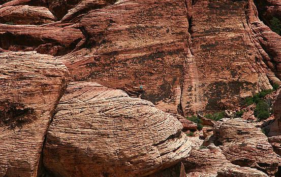 Rock Climber by Scott Cunningham