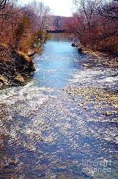 Rock Creek Illinois by Brigitte Emme
