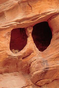 Rock Face Sculpture by Judi Baker