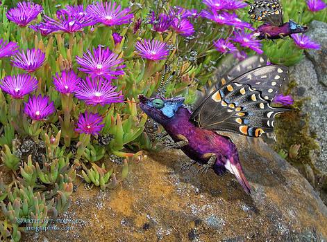Arthur Fix - Rock Flower Birguana Fly
