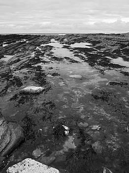 Rock Pool by Steve Watson
