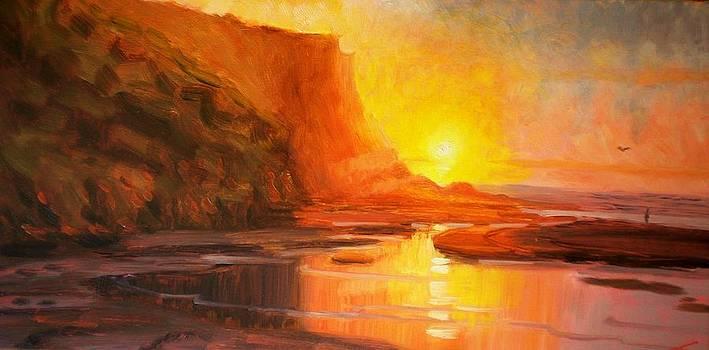 Rock Sunset by Elena Sokolova
