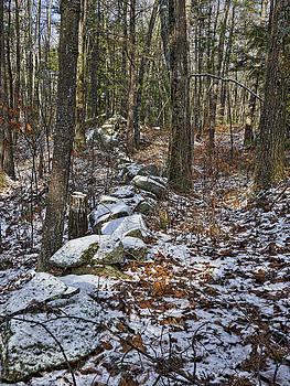 Steven Ralser - Rock Wall - Maine