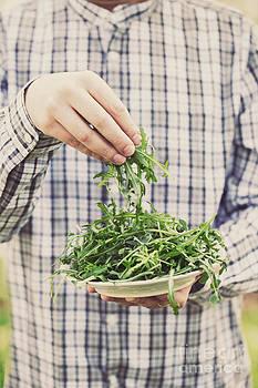 Mythja  Photography - Rocket salad