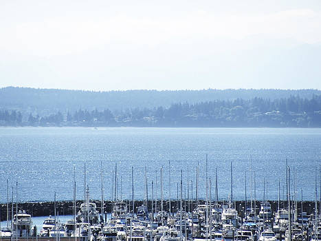 Rocking in the Puget Sound by Laura Watts