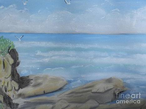 Rocks and Surf by Pamela  Meredith