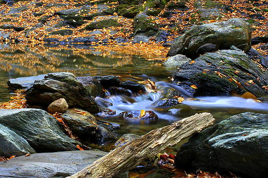 Rocks and Water in Autumn by Suzanne DeGeorge
