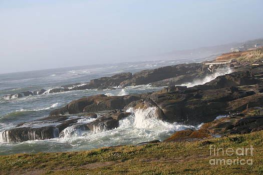 Rocks And Waves by Terri Johnson