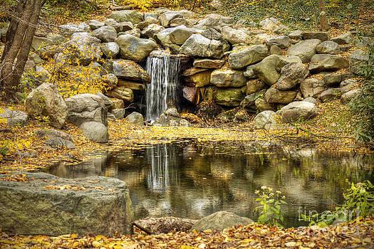 Rocky Falls in Autumn Season by Daniel Portalatin Photography