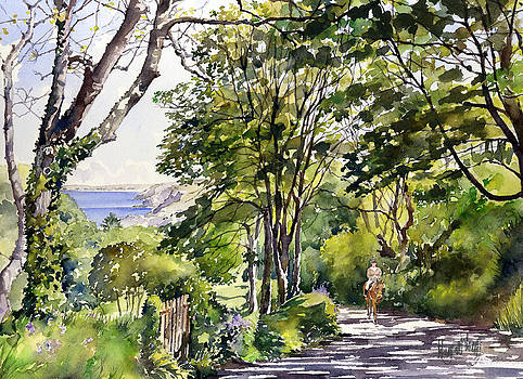 Rocky lane by Margaret Merry