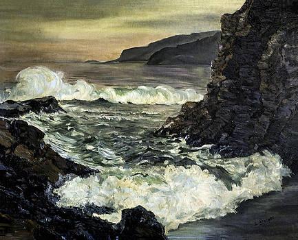 Lynn Palmer - Rocky New England Coastline
