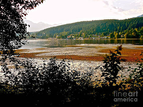 Rocky Point Port Moody by Sher Nasser