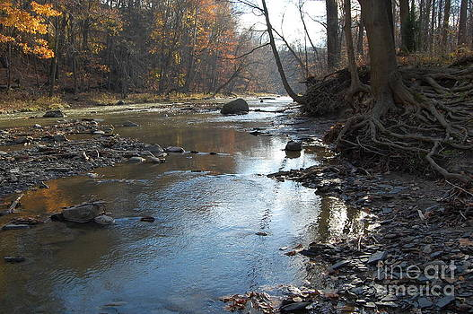 Rocky River in Fall by Bill Dinkins