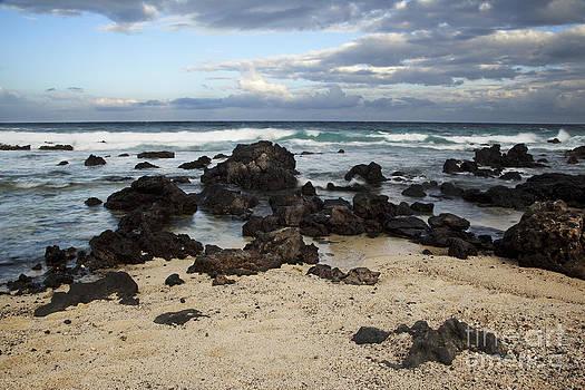 Charmian Vistaunet - Rocky Seascape - Hawaii