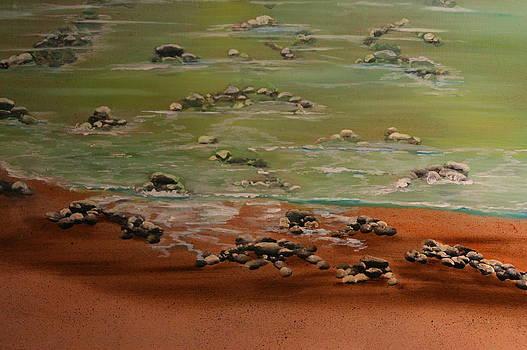ROcky Seashore by Donna Jeanne  Carver