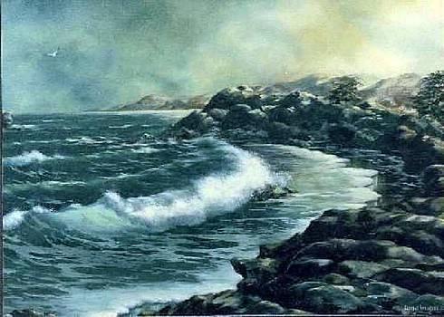 Rocky Shore by Lynne Wright