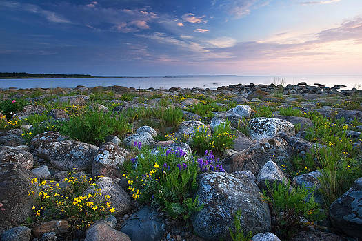 Rocky shores at the see by Anna Grigorjeva
