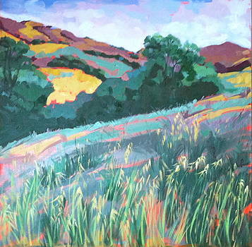 Rolling Hills of The Central Coast by Katherine Moldauer