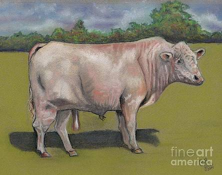 Rolling R Big Man Charolais Bull by Chris Bajon Jones