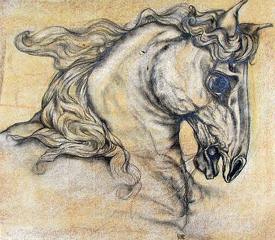 Roman Horse Sketch by Christine Maeda