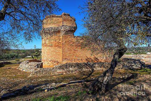 English Landscapes - Roman Temple at Milreu Portugal