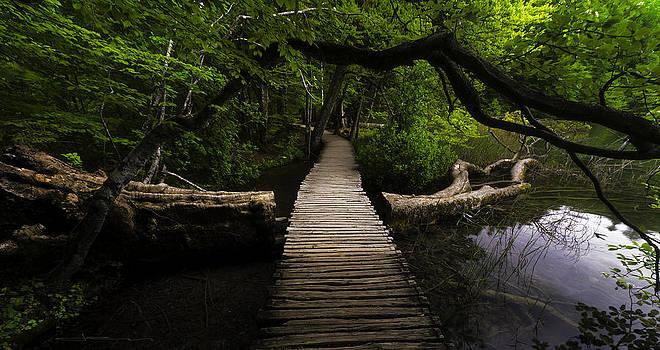 Romantic Footbridge  by Jens Tischer