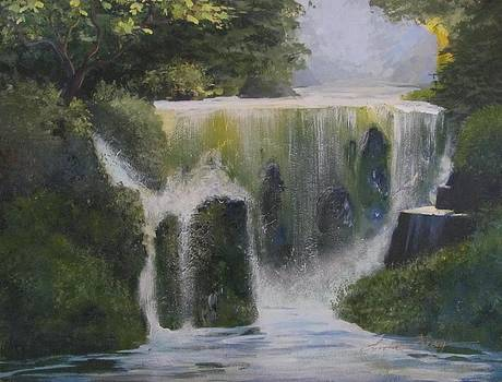 Romona Falls by Linda Bray