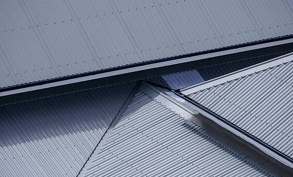 Steven Ralser - Roof lines - Montague Island - Australia