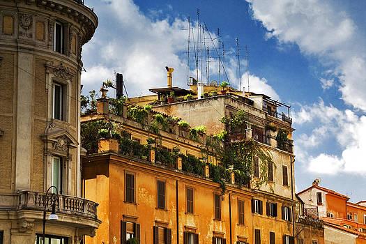 Rooftop Garden by Matthew Ahola