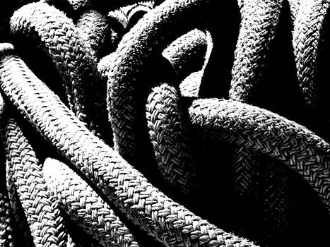 Rope by Mark Alan Perry