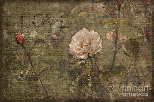 Liz  Alderdice - Rose Garden