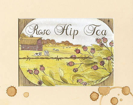 Rose Hip Tea by Lena Quagliato