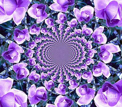 Rose Kaleidoscope by Judy Palkimas