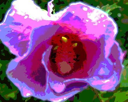 Rose of Sharon Abstract by Mark Malitz