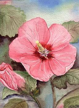 Rose of Sharon by Bonnie Fernandez