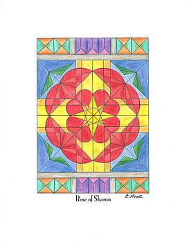 Rose of Sharon by Carol Neal