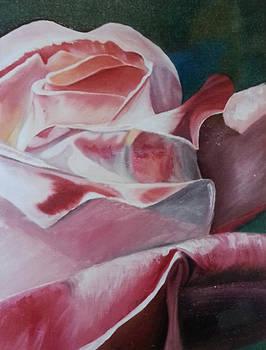 Rose  by Robert Foss
