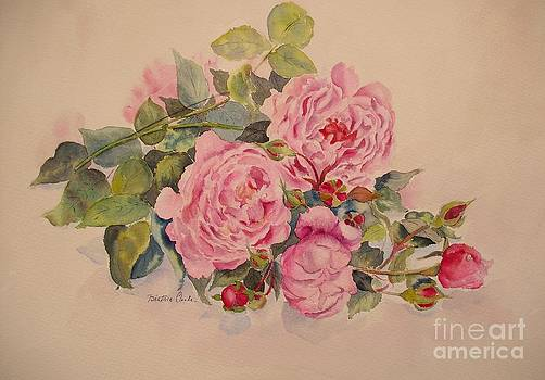 Beatrice Cloake - Roses and more roses
